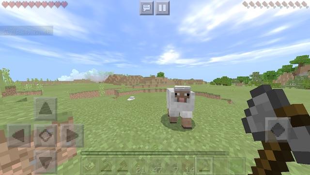minecraft13