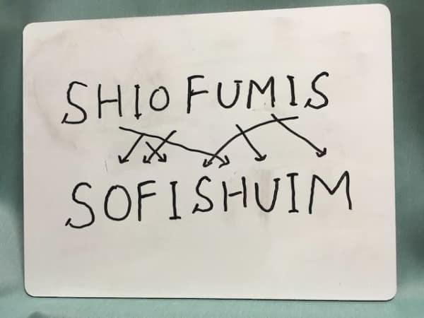 anagram-sofi-shuim